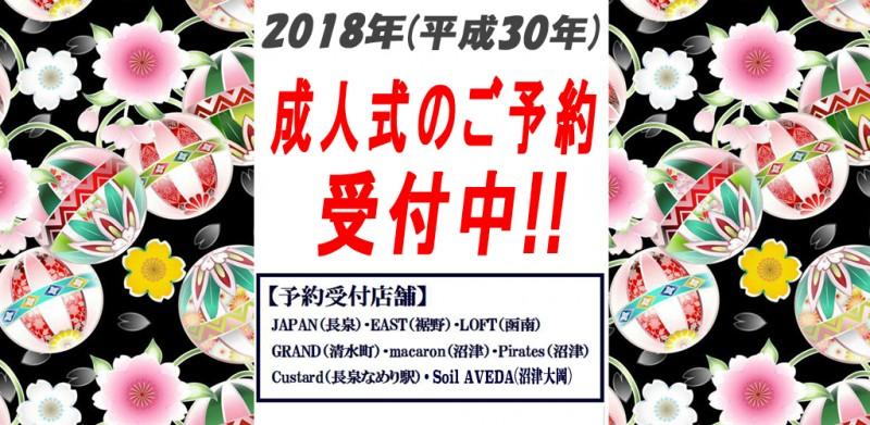 2018_seijin