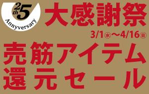 大感謝祭売れ筋アイテム還元セール!