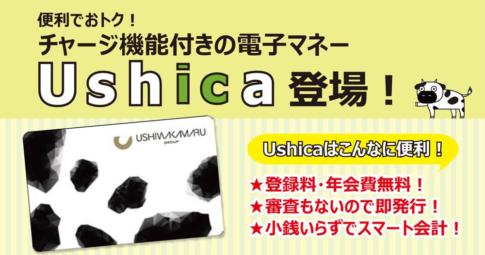 ushicaのバナー
